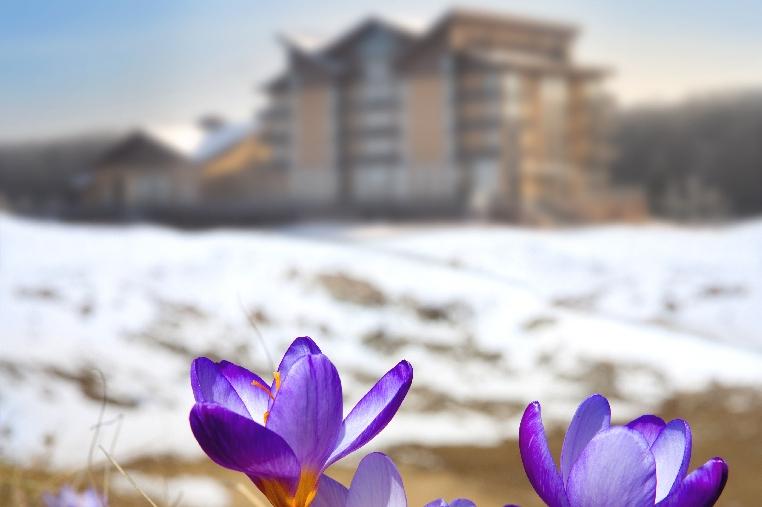 Spring weekend 2021: чудовий відпочинок у Superior Hotel